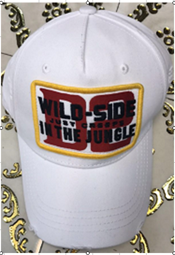 DSQ帽子コピーDSQMZ001