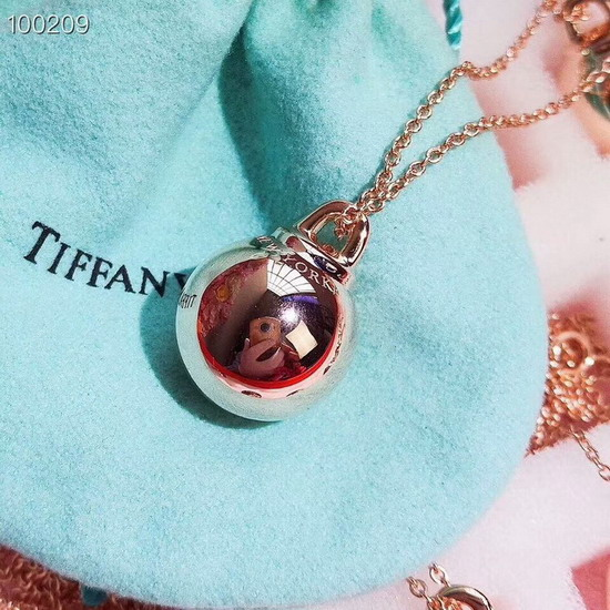 TIFFANY&COネックレスTFXL038