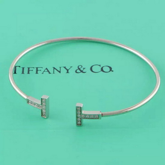 TIFFANY&COネックレスTFSZ004