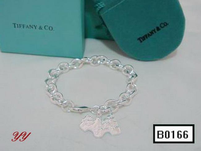 TIFFANY&COネックレスTFJH035